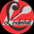 TV Lindenholt